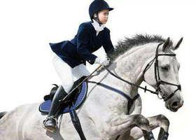 马术运动商城,骑马骑术