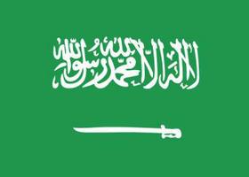 沙特阿拉伯购物网站,沙特海淘攻略,沙特电商