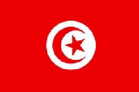 突尼斯購物網站,突尼斯電商平台網購買什麼特