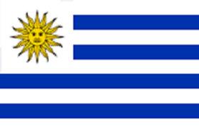 乌拉圭购物网站,乌拉圭电商平台网购买什么特