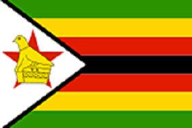 津巴布韋購物網站,津巴布韋電商平台網購買什